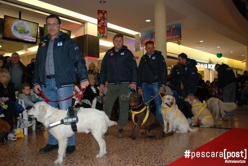 Befana ed esibizione cani al Porto Allegro 2 gennaio