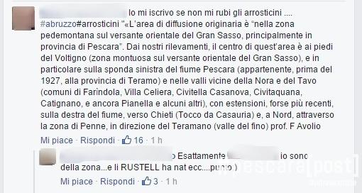 cannavacciuolo-arrosticini-facebook-2