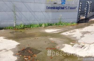 fuoriuscita acqua viale pindaro universita