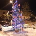 Albero di Natale largo Baiocchi