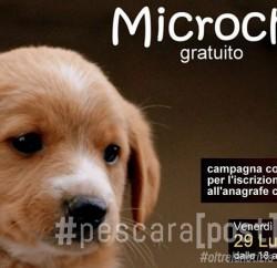 microchip gratuito loreto aprutino