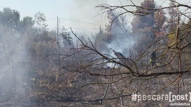 Incendio a Marina di Città Sant Angelo  fiamme nell ex camping  FOTO  -  PescaraPost a909ddc2b452