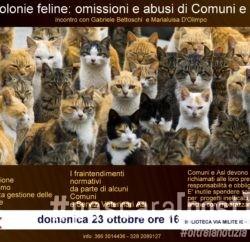 locandina-incontro-colonie-feline