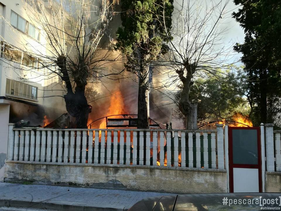 Incendio a francavilla al mare fiamme in un giardino in - Altezza alberi giardino privato condominio ...