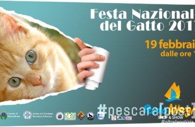festa nazionale gatto montesilvano