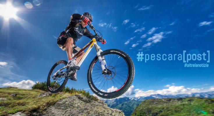 mountain bike ps24