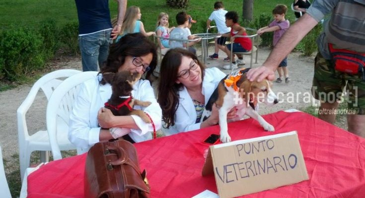 punto veterinario festa animali montesilvano